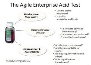 Enterprise Agility Test
