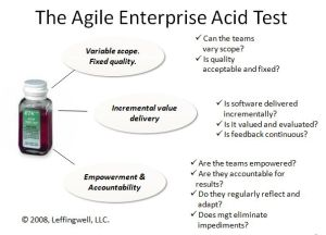 Agile Enterprise Acid Test